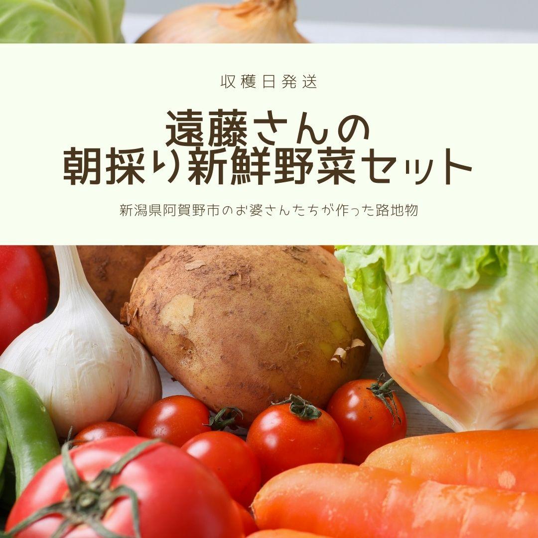 遠藤さんの朝採り新鮮野菜セット