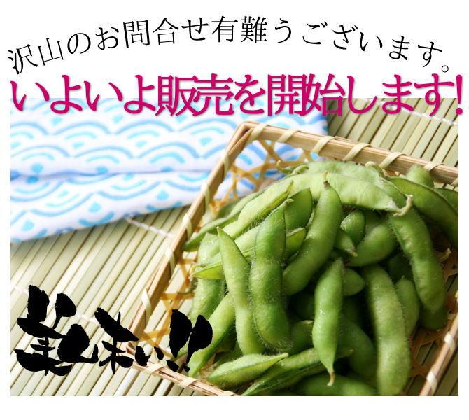 黒崎茶豆について沢山のお問合せ有難うございます。