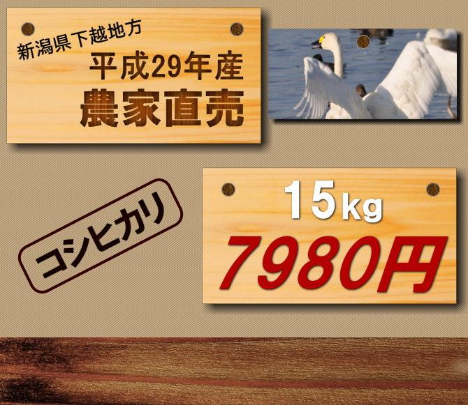 2017年産農家直売 遠藤さんの新潟産コシヒカリ新米15キロ7980円です。