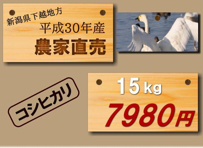 2018年遠藤さんのコシヒカリ新米。15kg7980円