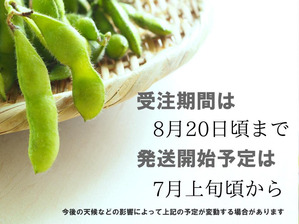 枝豆の発送開始は、7月上旬から