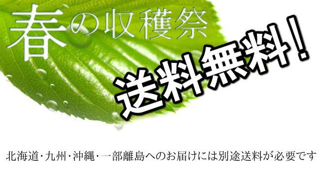 春の収穫祭!送料無料。北海道・九州・沖縄・一部離島へのお届けは別途送料が必要です。