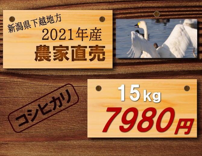 新潟県阿賀野市産遠藤さんのコシヒカリ15kg7980円