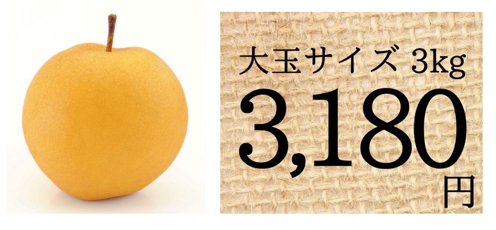 仲村農園の新興梨は、大玉サイズ3kgで3180円送料無料!!