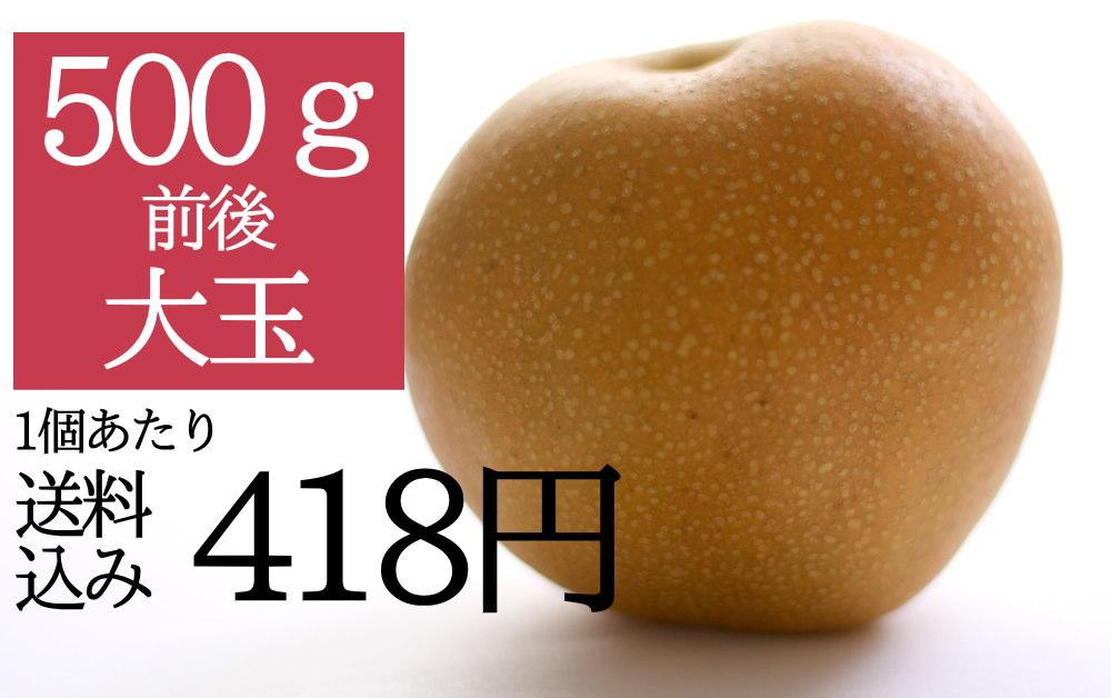 仲村農園の豊水梨3Lサイズのアピールポイント