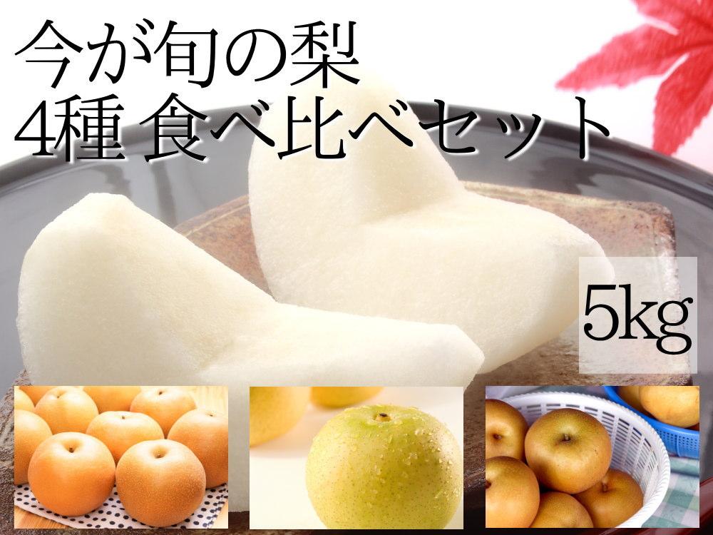 今が旬の梨食べ比べ5kgセット