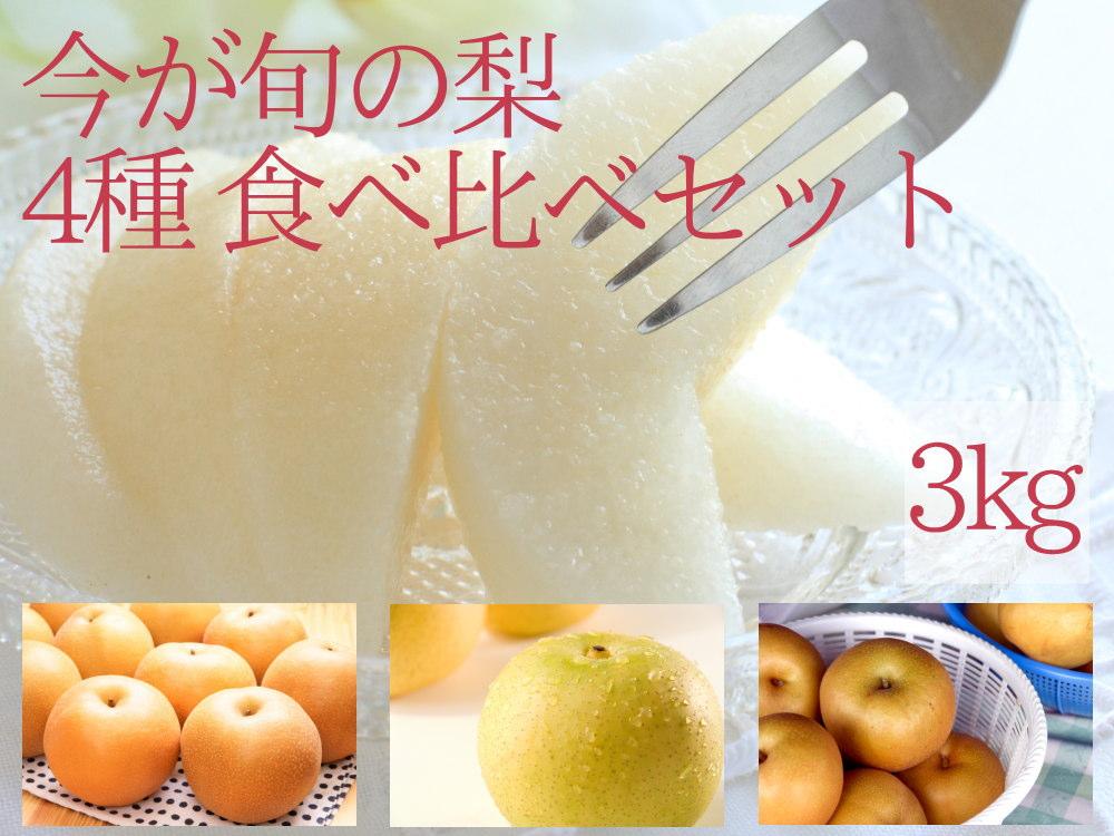 今が旬の梨4種を食べ比べセット3kg