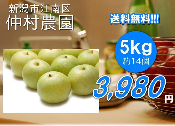 仲村農園の二十世紀梨は、5kg3980円で送料無料!