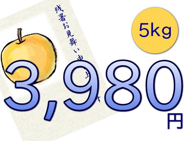 仲村農園の梨「幸水」は、5kg3980円
