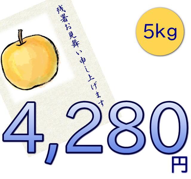 新潟市江南区仲村農園の幸水梨は、5キロ4280円で送料無料
