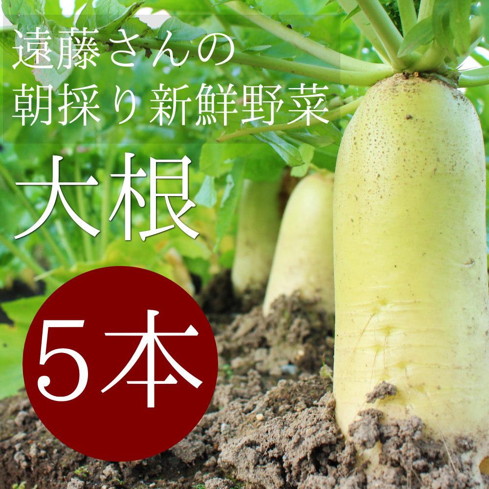 遠藤さんの朝採り新鮮野菜!大根