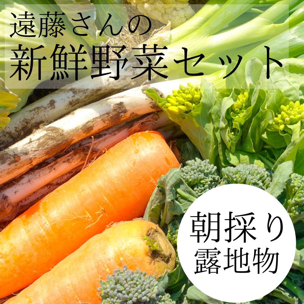 遠藤さんの農家直送 野菜が8点セット、送料無料