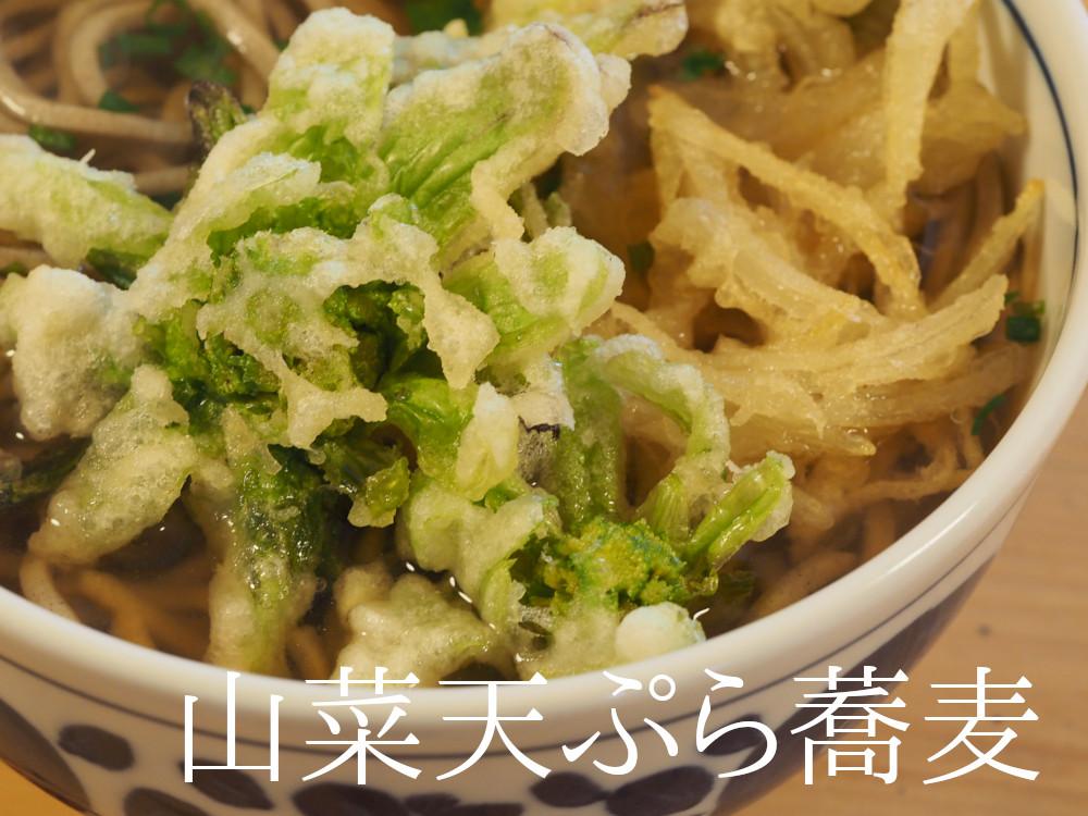 ふきのとうの天婦羅で山菜蕎麦