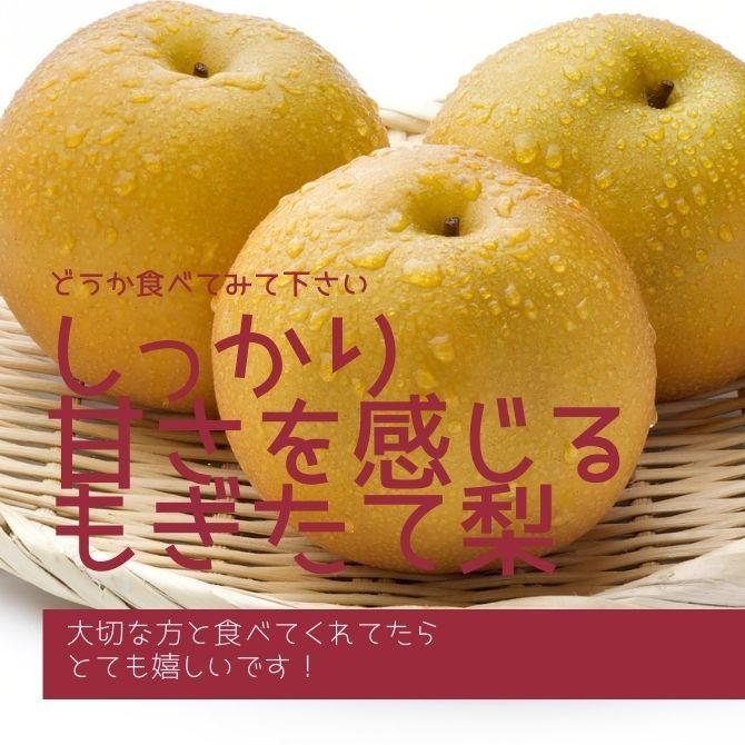 どうか食べてみて下さい!新潟産の豊水梨
