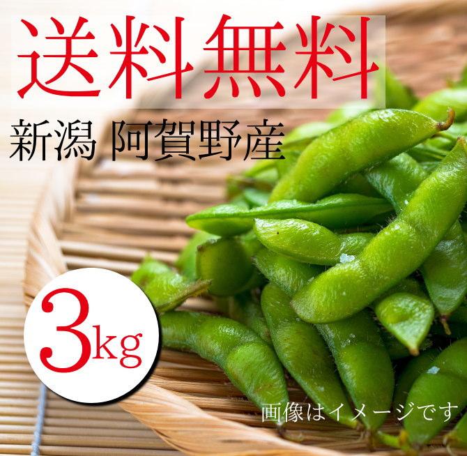 新潟県阿賀野市産枝豆3kgが送料無料