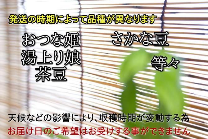 おつな姫、湯上がり娘、茶豆など発送の時期により品種が異なります。