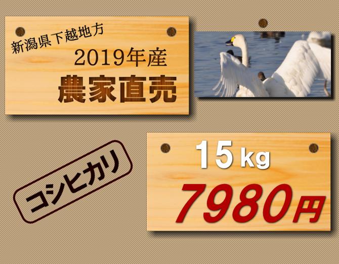 【米 直売】送料無料 新潟米コシヒカリ15kgが7980円