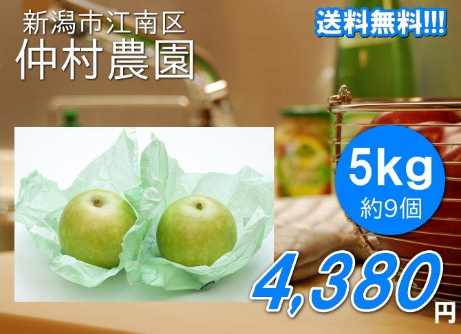 仲村農園の二十世紀梨の超大玉は、5kg4380円で送料無料!