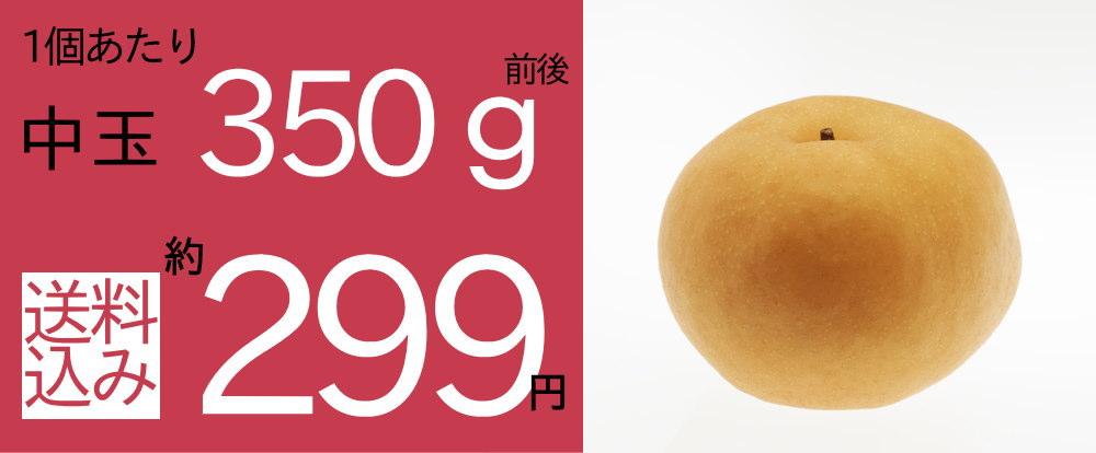 南水梨中玉5kgセットは、1個当たり約249円。