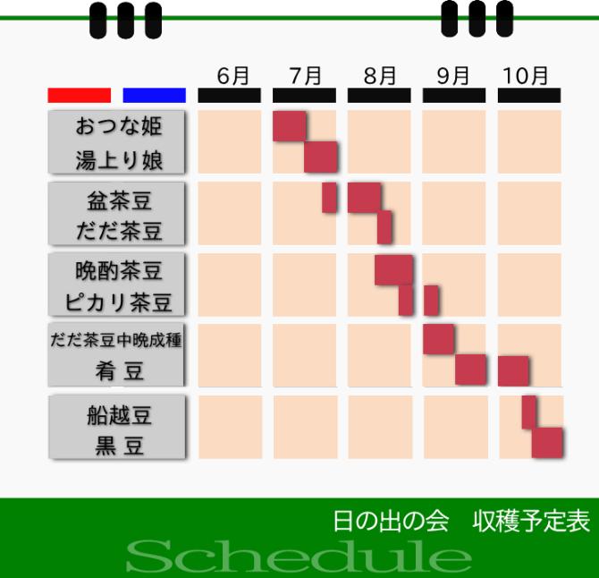 日の出の会 新潟枝豆収穫予定