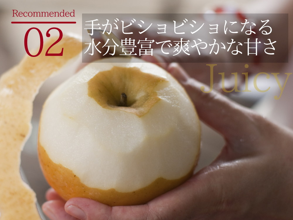 手がビショビショになる程に水分豊富でスッキリした甘さの新興梨