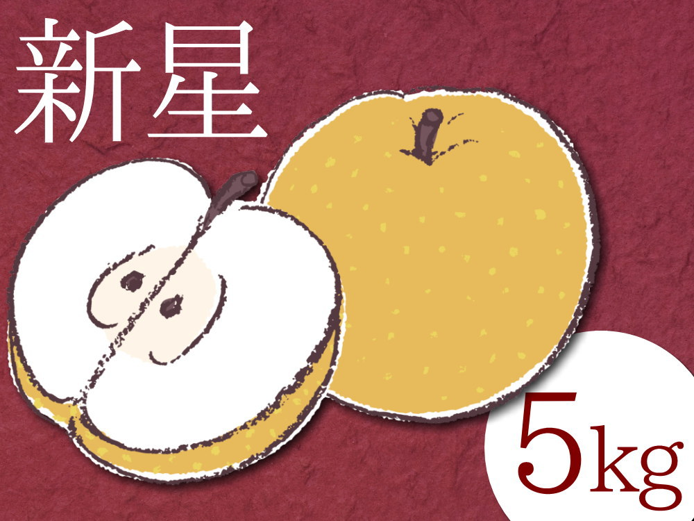 仲村農園の新星梨5キロ