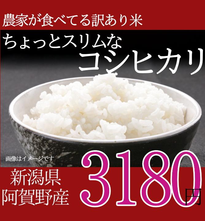 農家の食べてるお米。ちょっとスリムなコシヒカリ