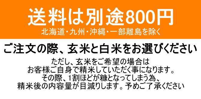 送料は別途800円です。北海道・九州・沖縄・一部離島を除く
