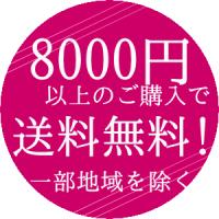 8000円以上のご購入で送料無料!