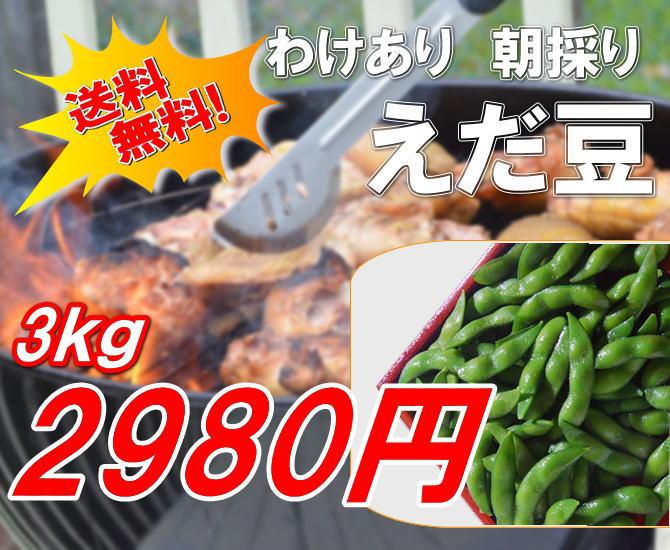 わけあり阿賀野産枝豆が、3kg2980円!