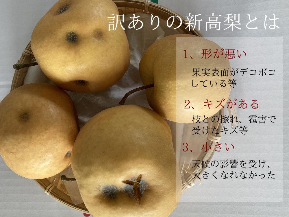 訳ありの新高梨とは、こんな梨です